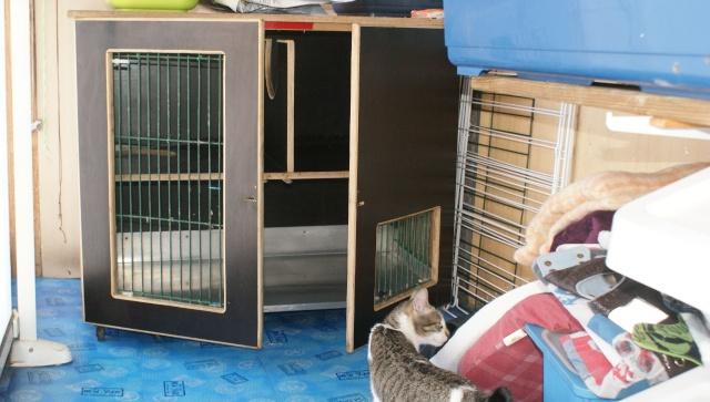 am nagement d 39 une cage avec un tage. Black Bedroom Furniture Sets. Home Design Ideas
