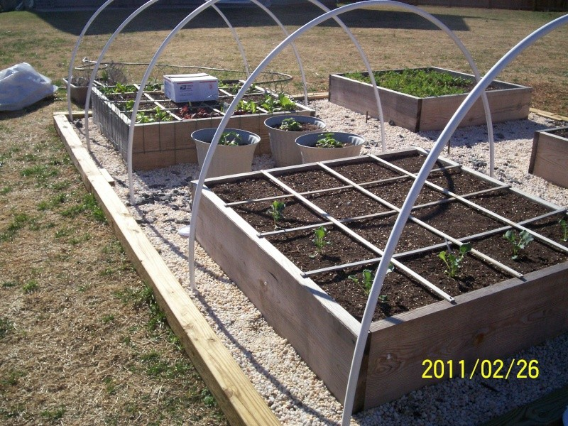 Hoop House Issue...How to Solve Please! - Page 3 100_2713