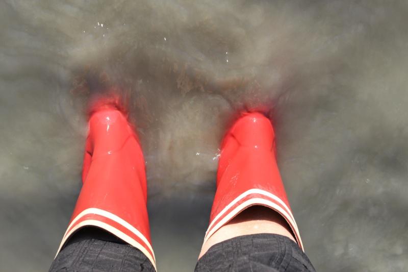 On a mis les pieds dans l'eau et on vous le prouve !! - Page 3 Img_0210
