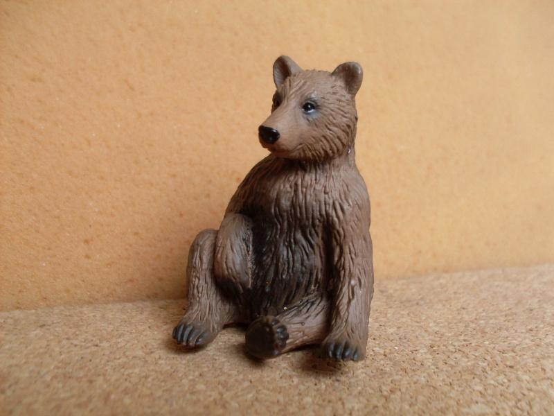 Bear cub 2015 Bear_m10