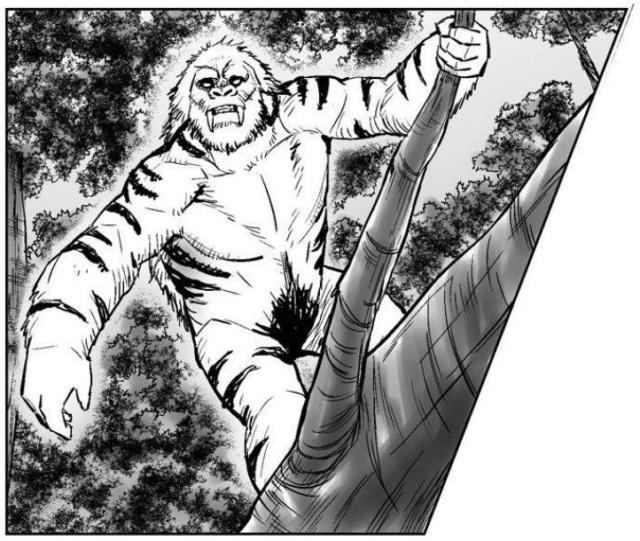 Images Grande Jungle - Page 2 Gnoar110