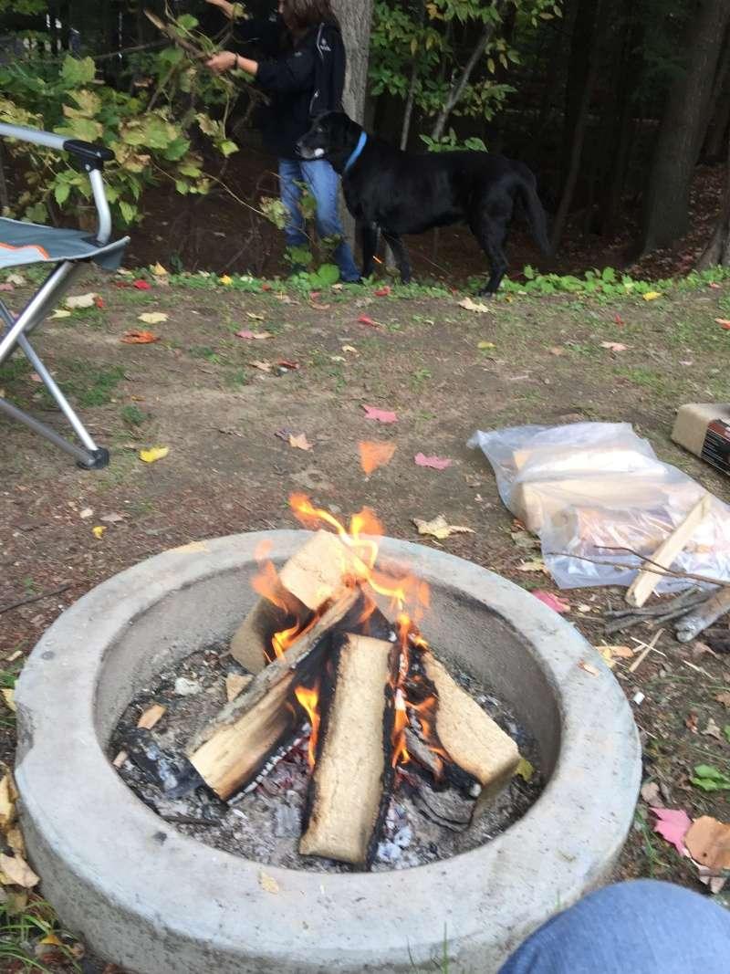 Camping Choisy (Rigaud) Image16