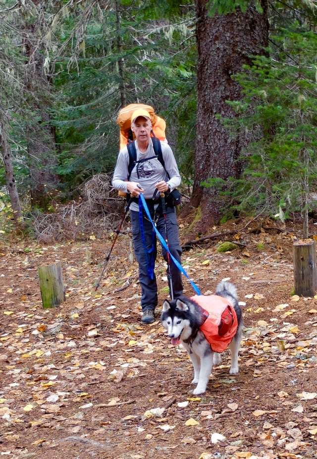 Hiking with Dogs: Indian Heaven Wilderness, WA 110