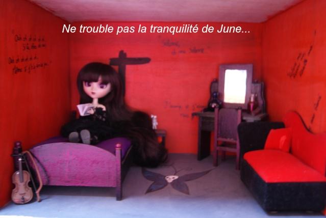 [Tranches de vie] Episode 10 : La nouvelle mascotte ! - Page 4 Dsc04717