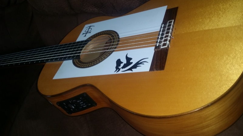 guitare camps cut500s  20151120