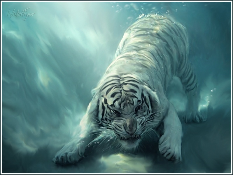 |P| Summon Tygra Tiger_10