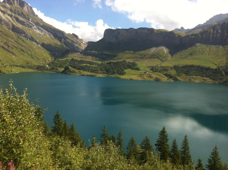 Entre les Alpes, le Jura et les Bauges - Page 3 Img_0411