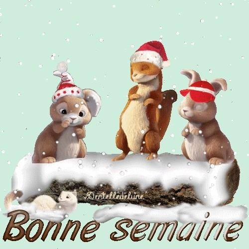 """""""Bonjour / Bonsoir"""" !!! - Page 40 46867610"""