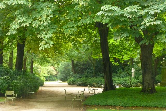 Choses vues dans le jardin du Luxembourg, à Paris - Page 4 Aout_210