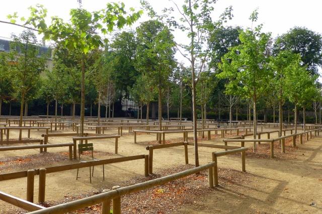 Choses vues dans le jardin du Luxembourg, à Paris - Page 4 Lux_et11