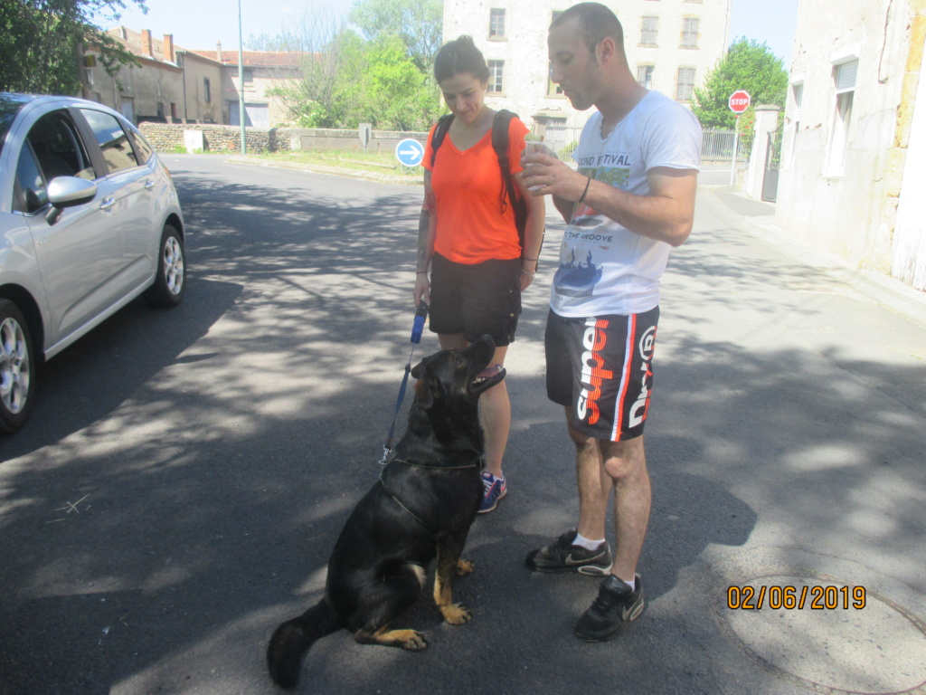Randô chien 6 ème edition😊 Img_1814