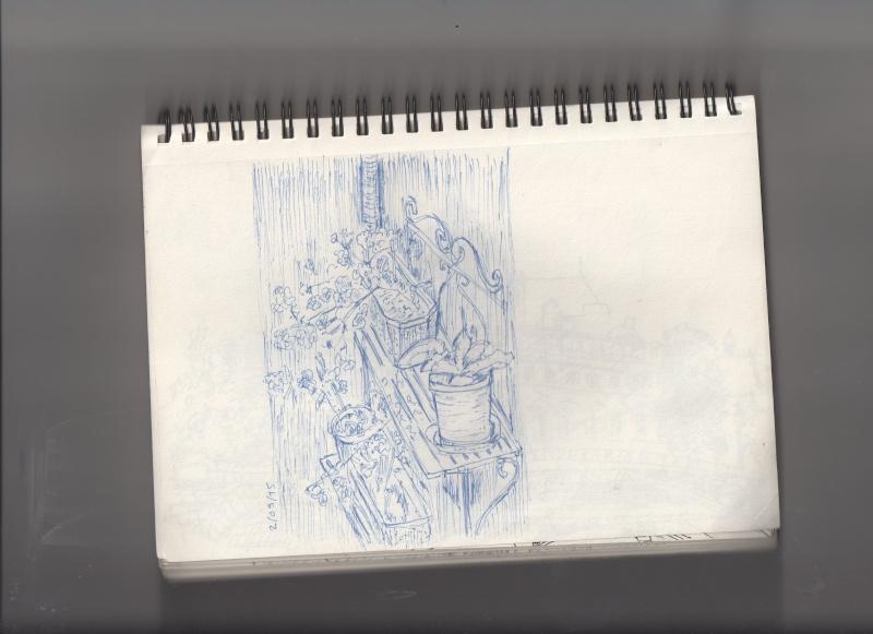 La galerie de Lazu  - Page 2 Bscn0711