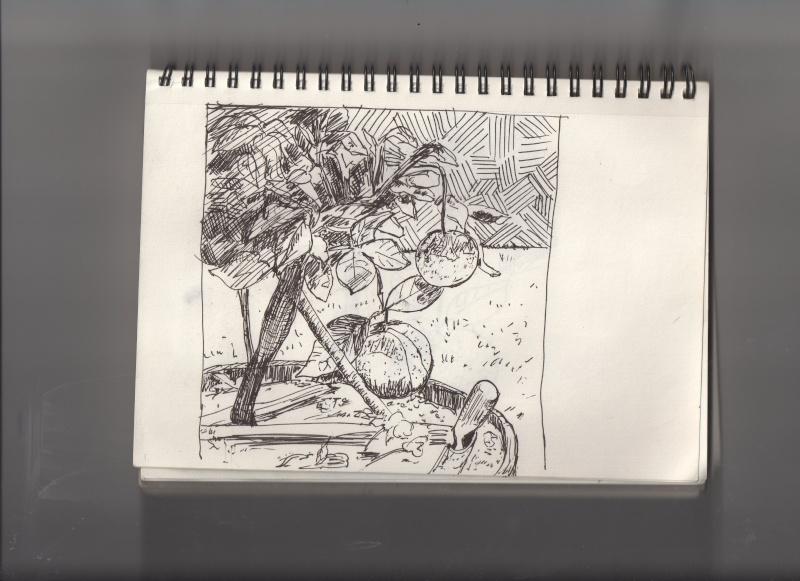 La galerie de Lazu  - Page 2 Bscn0713