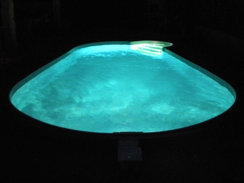 notre piscine AMANDINE 730  - Page 2 Dscn0523