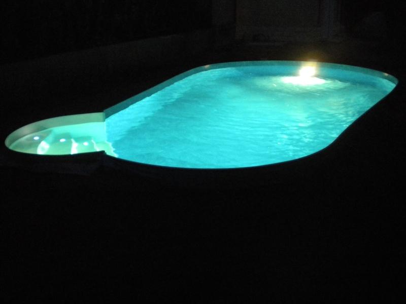notre piscine AMANDINE 730  - Page 2 Dscn0525