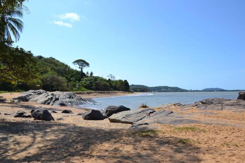 Trip Guyane du 16 au 31 Octobre  Image13