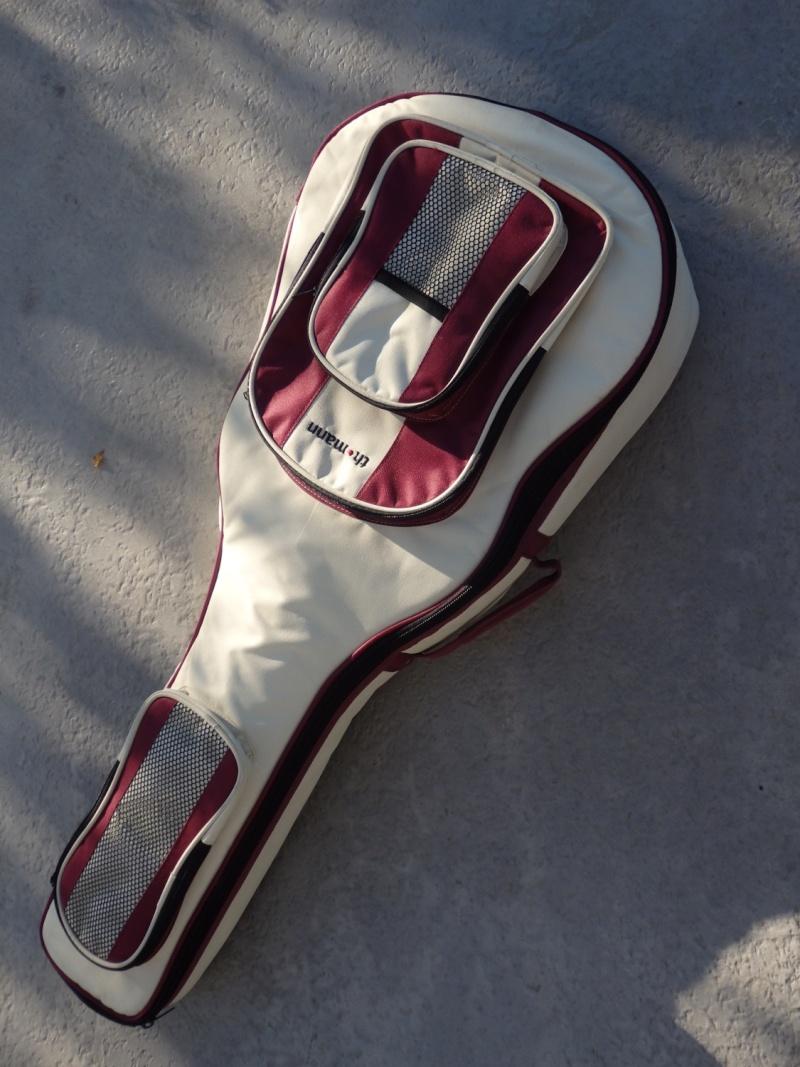 GRETSCH Bobtail steel squareneck electro ....... VENDU G910