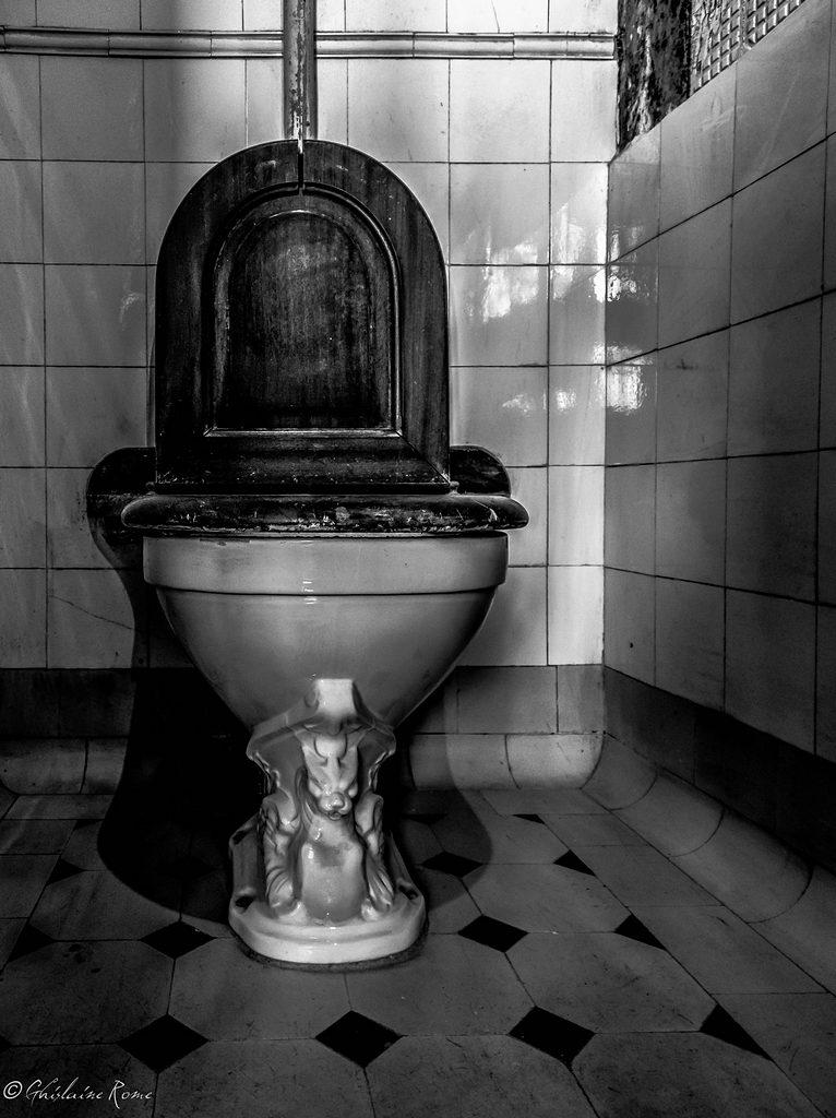 Sur la route du château de Trévarez - Page 2 Toilet11