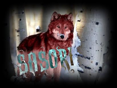 Cor's Pic shop^^ Wolves10
