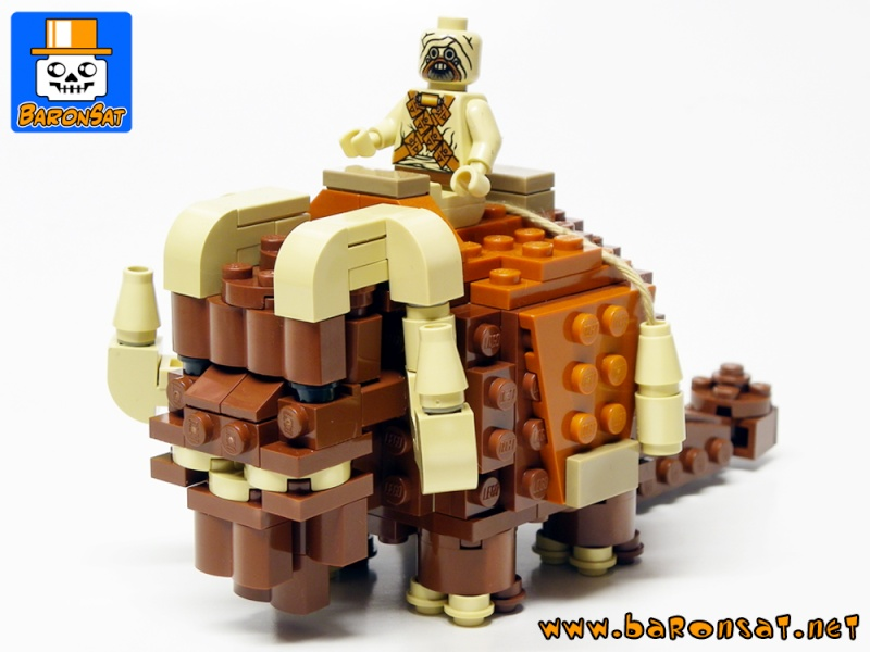 Collection n°112 : dgconsulting Lego SW - Page 6 Mumuth10