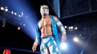 Concours de Popularité WWE de fin de l'année - Page 6 14410