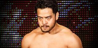 Concours de Popularité WWE de fin de l'année - Page 6 Hideo-10