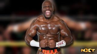 Concours de Popularité WWE de fin de l'année - Page 3 Maxres10