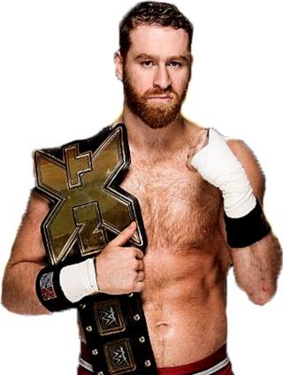 Concours de Popularité WWE de fin de l'année - Page 6 Nxt_sa10