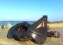 tour du finistere - Tour du Finistère par la côte [5 au 18 septembre] saison 10 •Bƒ - Page 2 Photo249