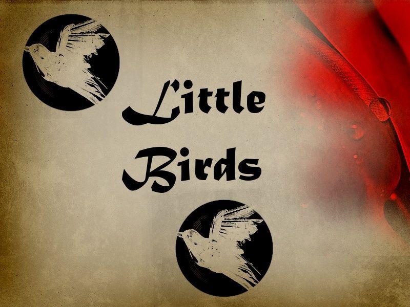 Single Birds Little11