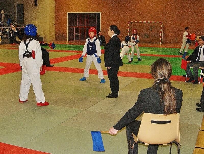 Open de la ligue de Paris Combat 7 nov 2015 Dsc00145