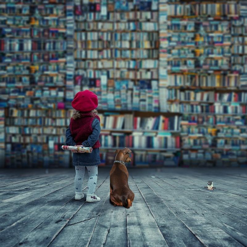 La lecture et moi Livres10