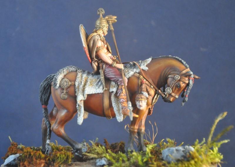 Cavalier celte- Pegaso- Terminé enfin Dsc_0014
