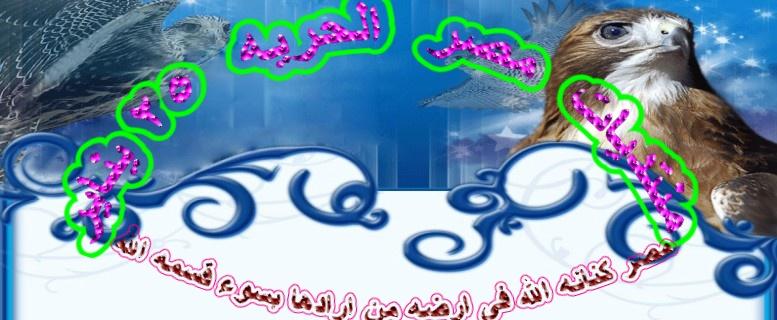 منتديات مصر الحريه 25 يناير