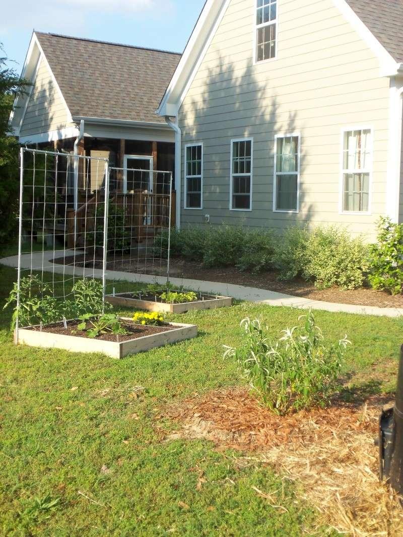 my garden pics 102_0415