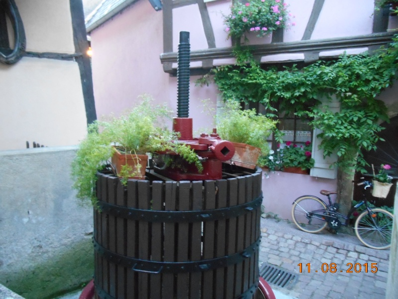 Equisheim (Francia) Dscn1076