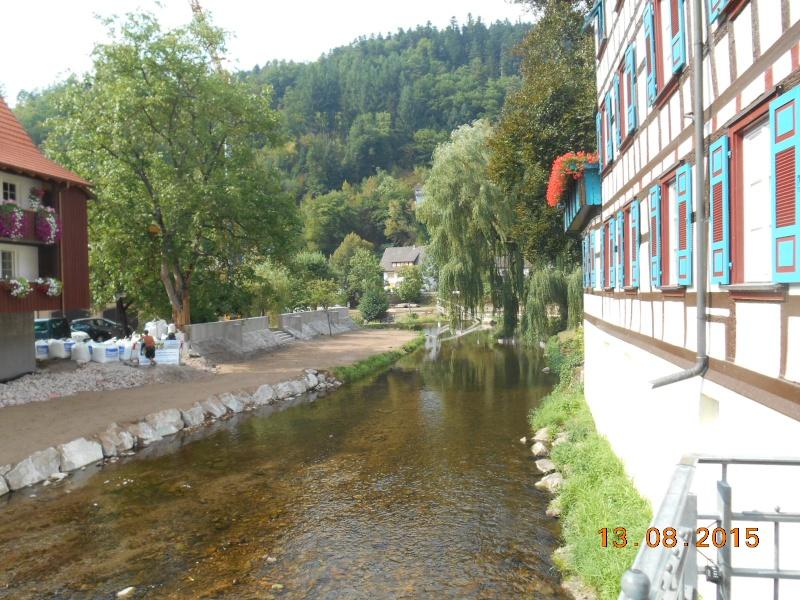Schiltach (Germania) Dscn1118