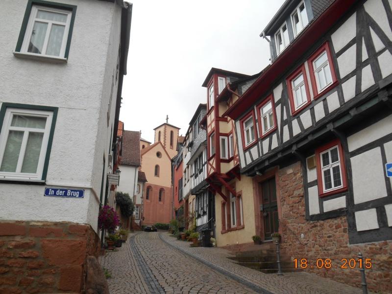 Gelnhausen (Germania) Dscn1167