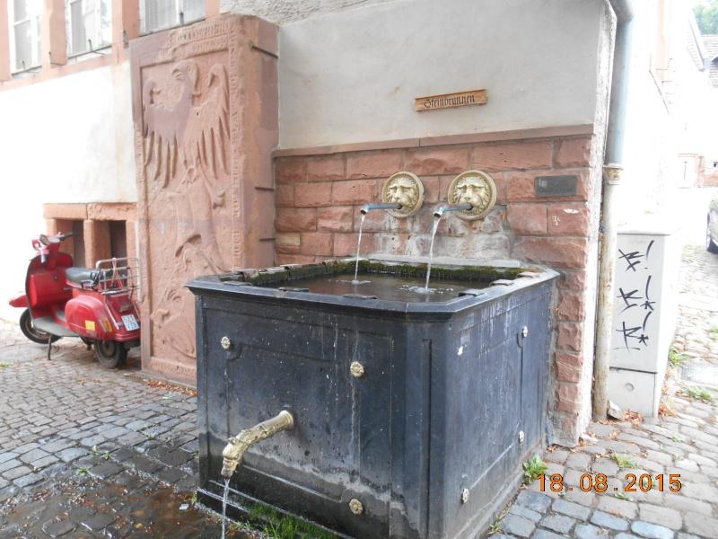 Gelnhausen (Germania) Dscn1175