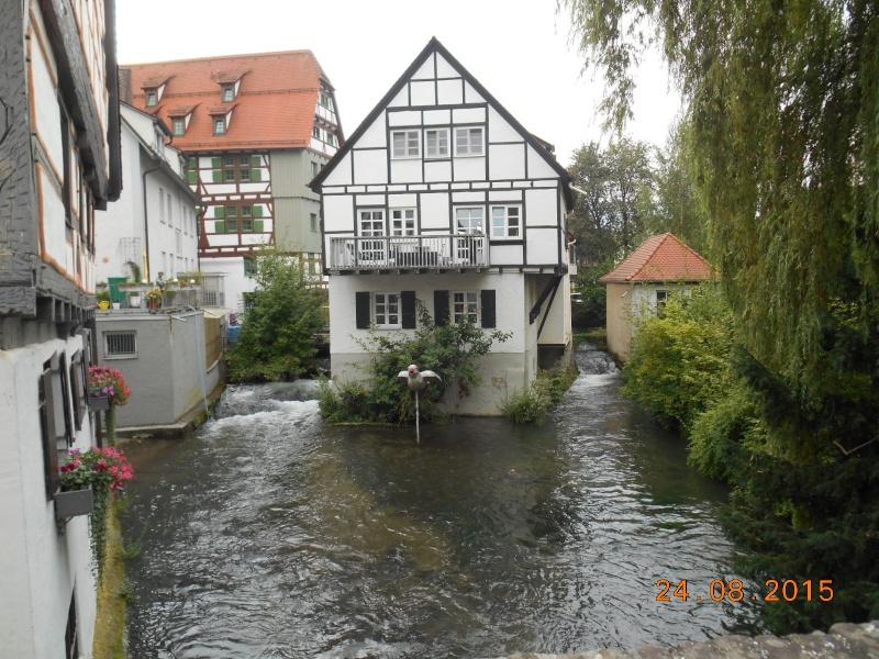 Ulm (Germania) Dscn1314