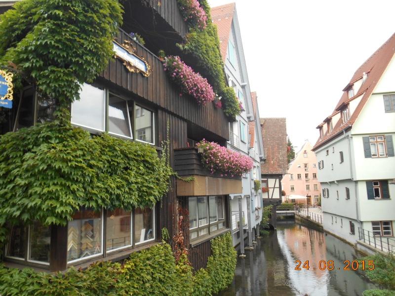 Ulm (Germania) Dscn1315