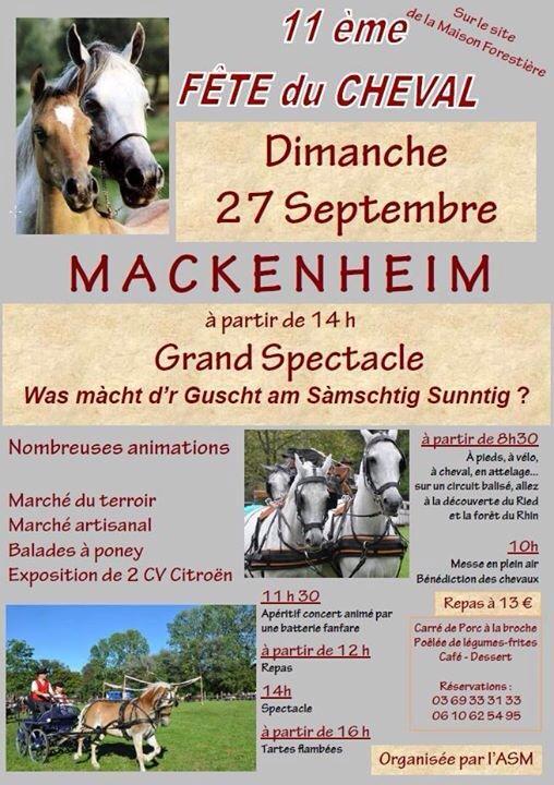 -FÊTE DU CHEVAL 27 SEPTEMBRE- Mackenheim (67) 0110