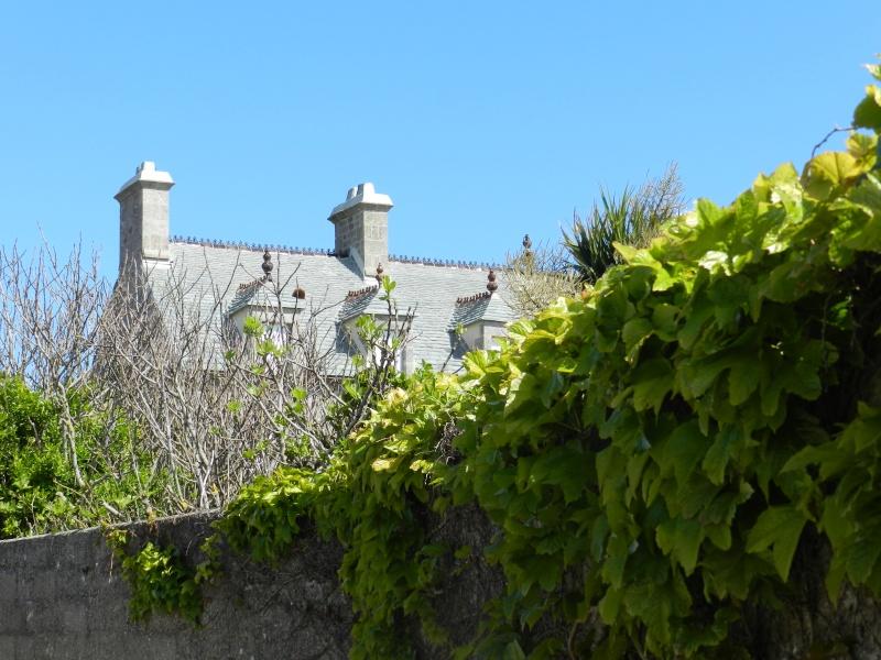 Normand Dit : en Normandie c'est parfois gris - Page 4 Dscn6017