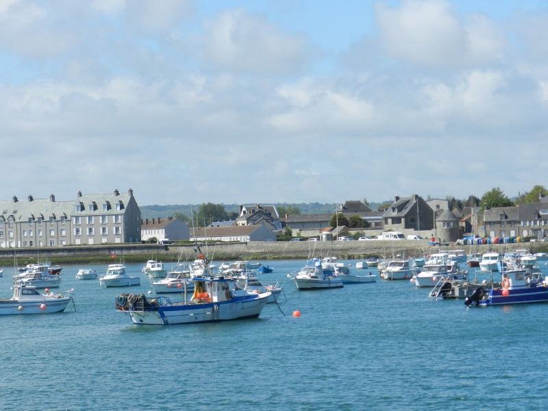 Normand Dit : en Normandie c'est parfois gris - Page 4 Dscn6018