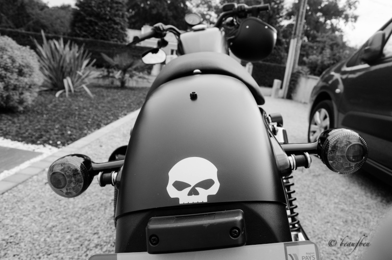 shooting de ma black skull Ben_2315