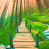 landscape003.jpg