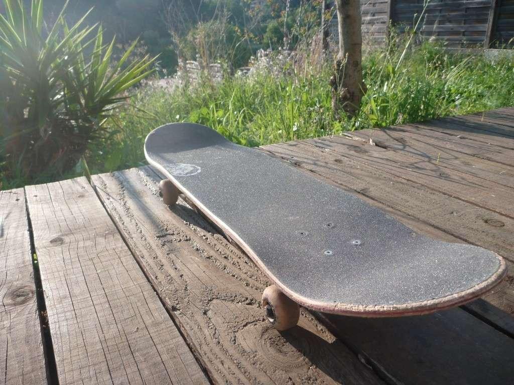 Vends Skate P1030010