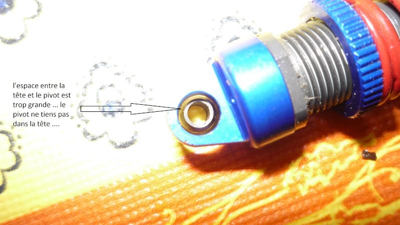 Dual servo sur revo vxl 1/16 P1030526