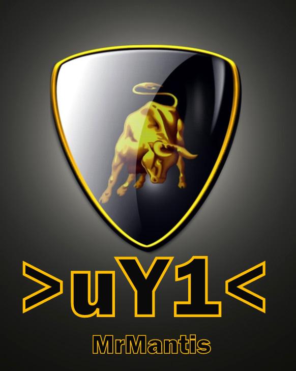 DO YOU LIKE IMAGE? Logo_s13