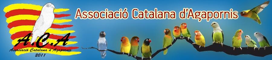 Asociación Catalana de Agapornis